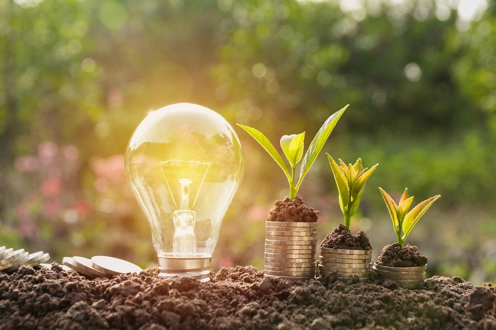Quels sont les impacts économiques de la transition écologique ?